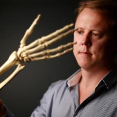 Dr Chris Jeffery looking at the skeleton of right hand and forearm